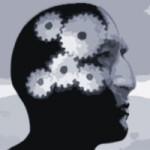 Limbic Marketing Seminar Neuromarketing Strategie