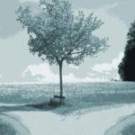 Einzelbüro versus Großraumbüro: Pro und Contra Vorteile und Nachteile der Büroformen